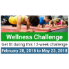 2020 Wellness Challenge Start