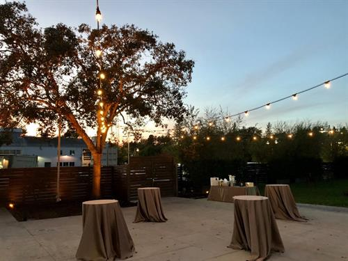 One of our new services we've added is String Lighting! Here we provided Up-Lights with an amber color and string lighting.
