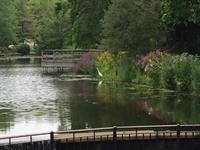 Nassau County's Baxter's Pond Park and Barbara Johnson Preserve