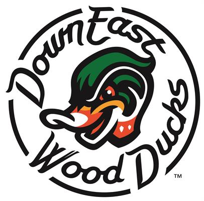 Down East Wood Ducks