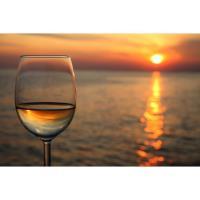 Memorial Day Wine Tasting