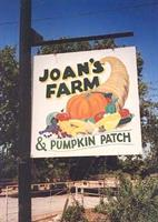 Joan's Farm & Pumpkin Patch