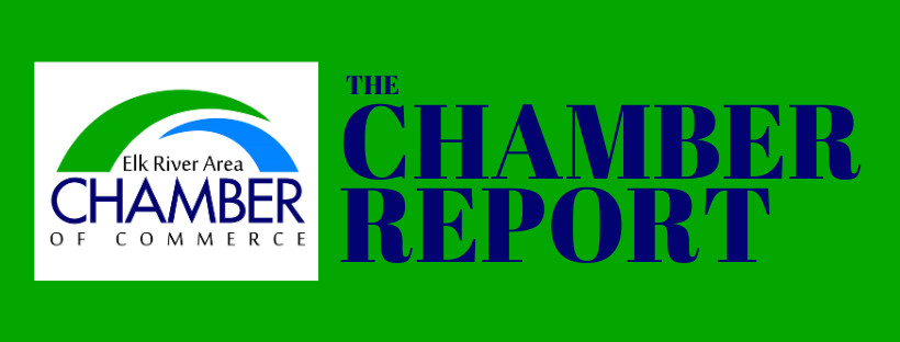 Image for Chamber Report - Edition 1 - January 2020