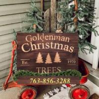 Goldenman Christmas Trees - Zimmerman