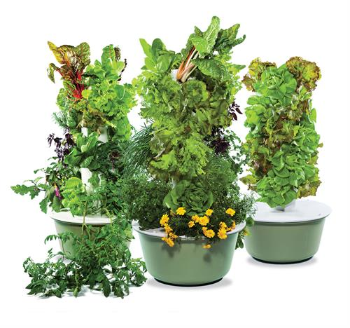 The Tower Garden to grow your own fruits and vegetables