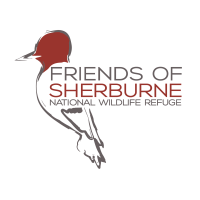 Getting Outside with a Little Help from the Friends of Sherburne County NWR
