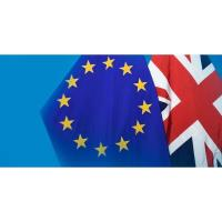 Chambers Ireland makes urgent call for certainty on Brexit extension date