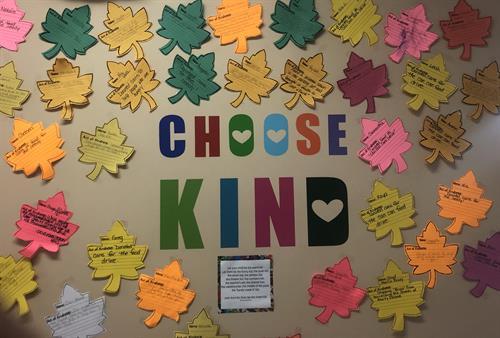 #choose Kind