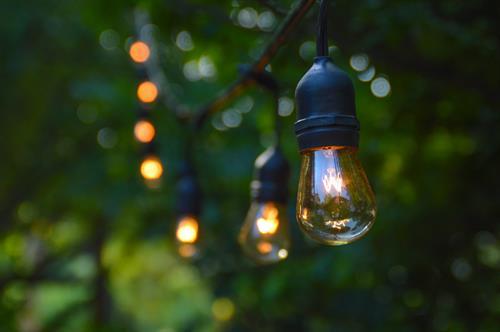 Gallery Image Twinkle_Lights.jpg