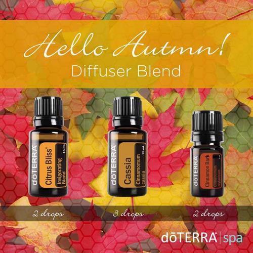 Hello Autum diffuser blend