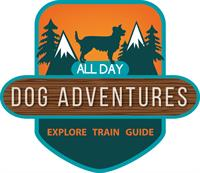 Group Dog Training Obedience class with fun enrichment activities