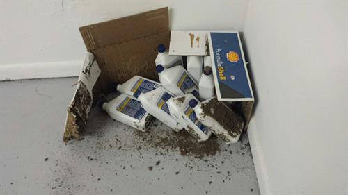 Gallery Image termites-cardboard_box.jpg