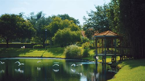 Villas lake