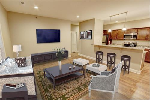 Gallery Image 29_Mill_Hollow_Apartments_Living_Room.jpg