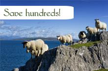 Gallery Image travel_save_sheep_hundreds.jpg
