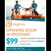 Dogtopia Of Paradise Valley Village - Phoenix