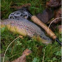 Fly Fishing Seminar: Tactics for Spring Trout