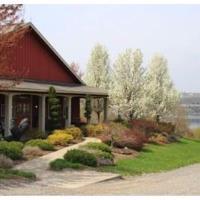 Rooster Hill Vineyards - Penn Yan