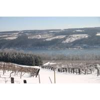 Glenora Wine Cellars - Dundee