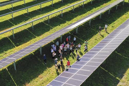 Local Solar Farm