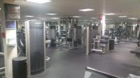 Free Weights and Personal Training