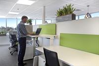 The Hive Ergonomic Desk - why sit when you can stand?