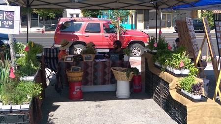 Brigham City Farmers market