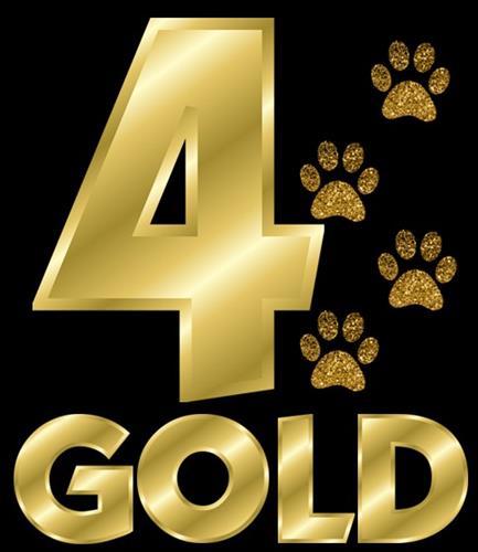 4Gold Logo