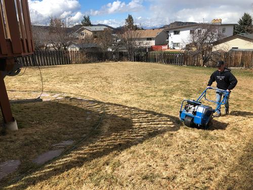 Spring services like dethatching and aerating are key to great look lawns