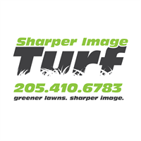 Sharper Image Turf