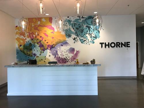 Gallery Image thorne-reception-desk.jpg