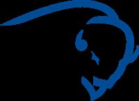 Buffalo Rock Pepsi