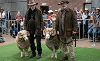 'Rams' Film Premiere