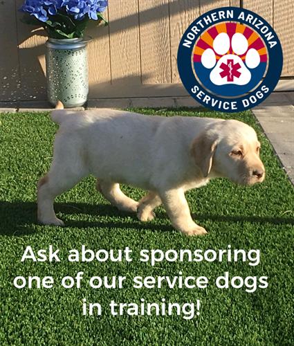 Be a sponar of a service dog