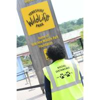 Opening day at Yorkshire Wildlife Park after lockdown