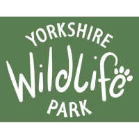 Animals at Yorkshire Wildlife Park enjoy refreshing treats as temperatures soar