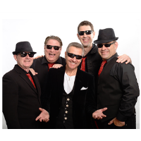Concert on the Green: The Smokin' Cobras: Rockin' Old School Radio Hits