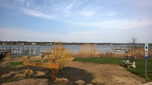 Maple Cove, Red Bank NJ