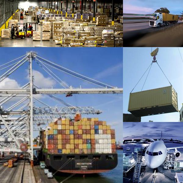 NVO Container Line Inc dba Global Logistics USA