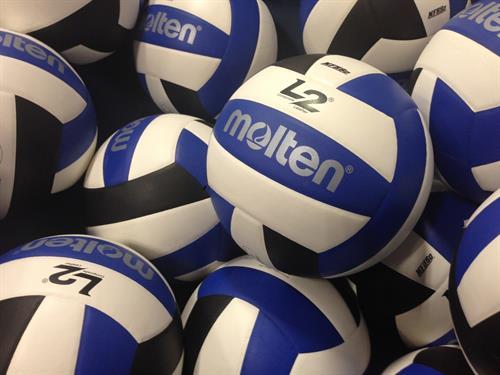 Gallery Image volleyball.jpg