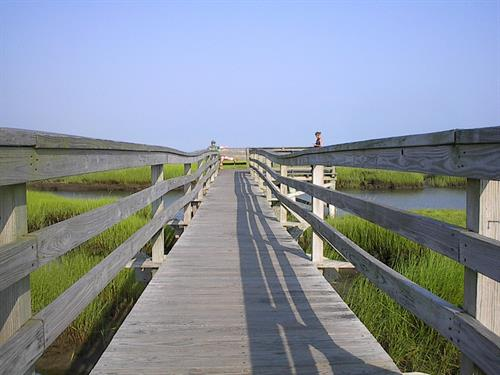Gray's Beach Boardwalk