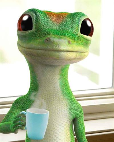 Gallery Image 5f56a8b3bdd59b74cd7bf382_geico-gecko.jpg