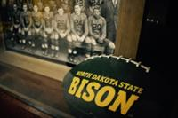 NDSU Bison Fan Cave