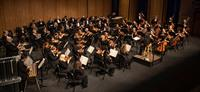 Maestro Christopher Zimmerman leads the Fargo-Moorhead Symphony Orchestra