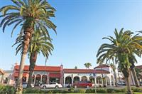 Palm trees lined avenues welcome visitors to downtown