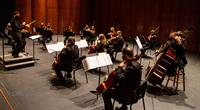 The Venice Symphony offers Free Virtual Concerts to All