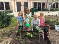 VABI's Children's Garden partnered with Venice Library teaching kids about gardening