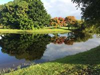 Calusa Lakes #9
