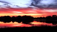 Calusa Lakes sunrise