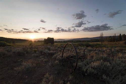Gallery Image Meadow_Implement_Sunrise_9-1_0487.jpg